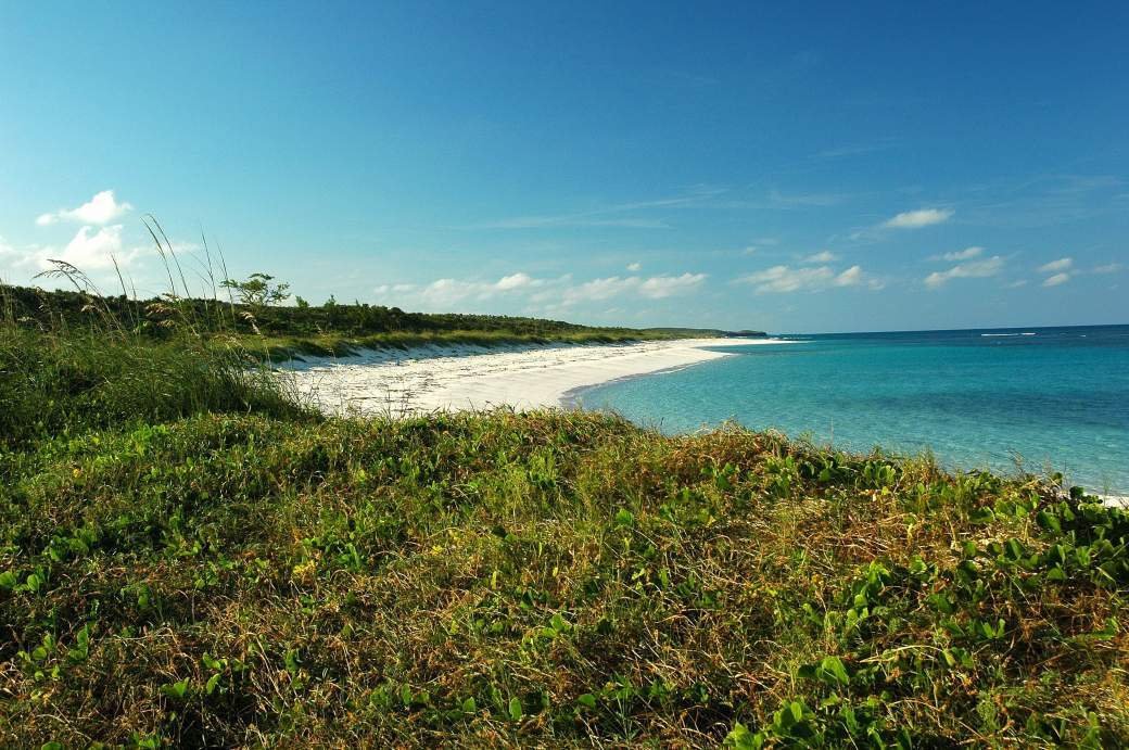 Beachfront view from inland
