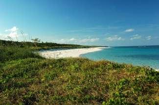 15 Acres with Beachfront