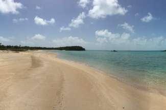 21 Acre Beachfront Parcel
