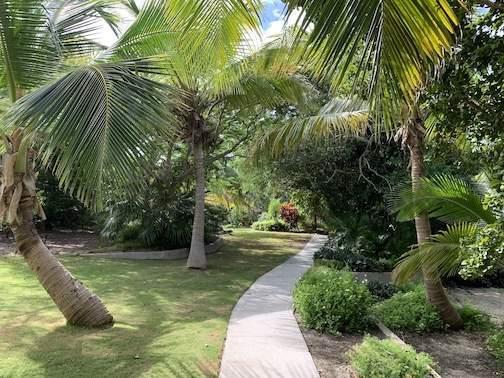 Lush-Garden-Solstice