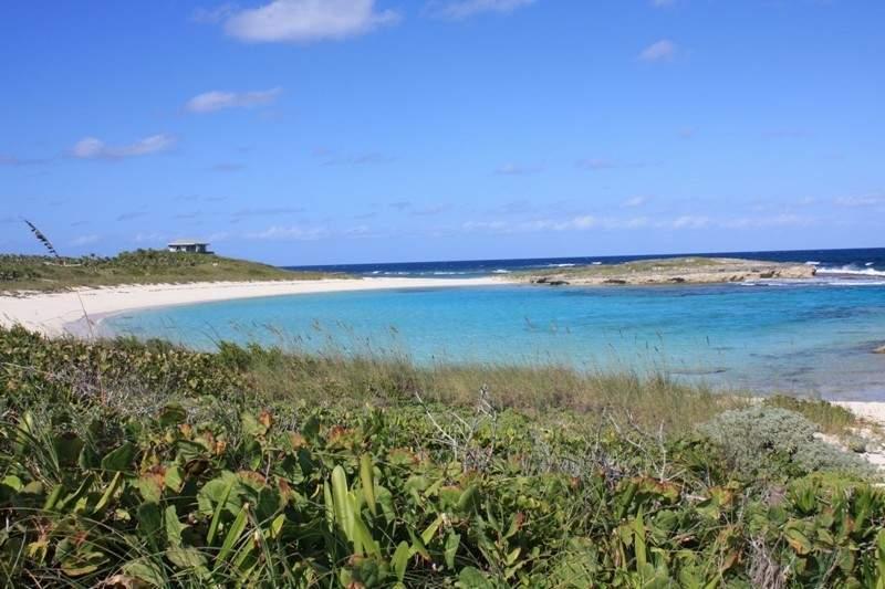 Whelk-Cay-Cove