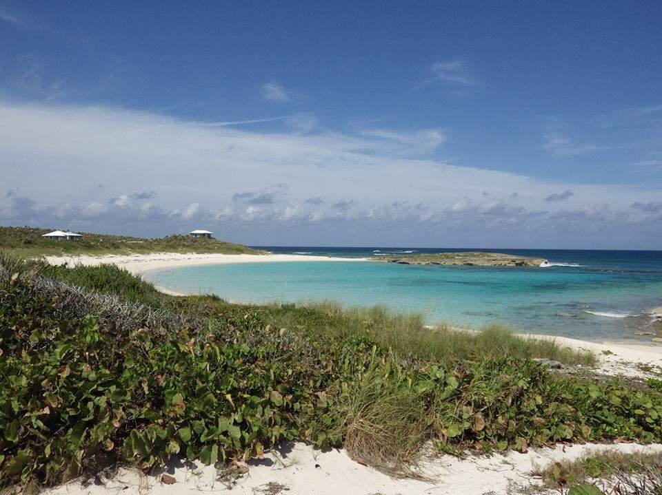 Whelk-Cay