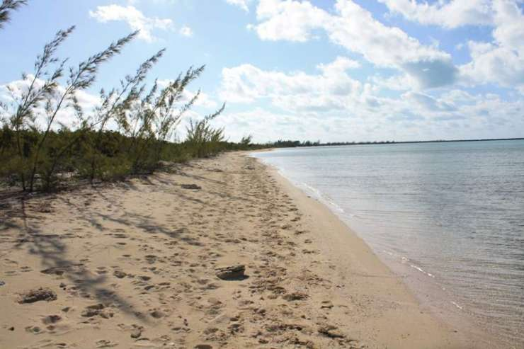12 Acre Parcel with beachfront