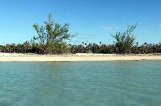 42 Acre Parcel with Beachfront