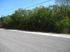 Roadfront - Dan Deal