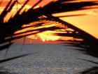 Sunset - Boland