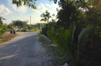 0.42 Acre Lot – Cartwrights