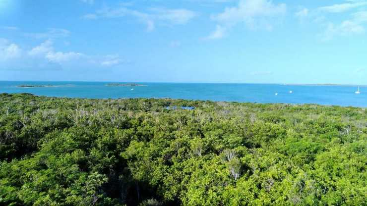 1.5 Acre Waterfront Parcels – Salt Pond