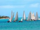 Salt Pond Harbor - Regatta
