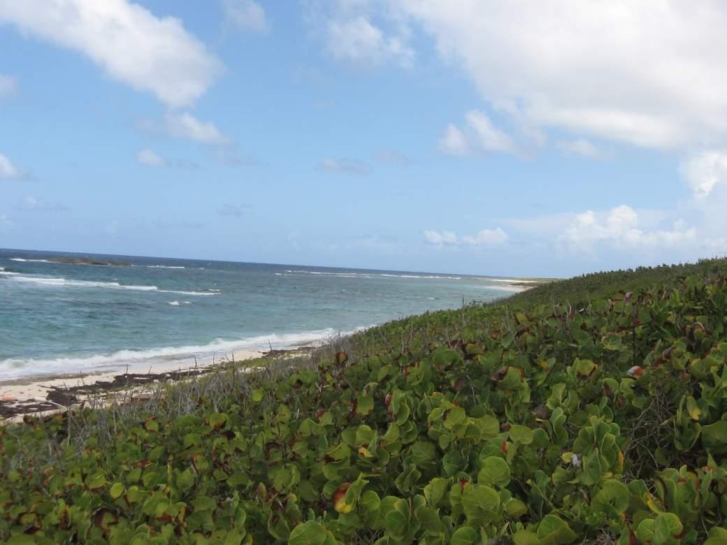 View to the South beach strip