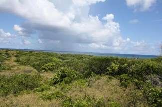 Hilltop Ocean View Lots