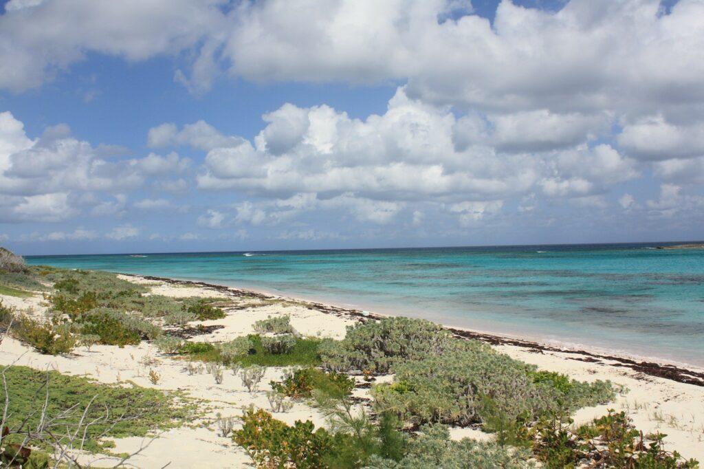 Beachfront Parcel
