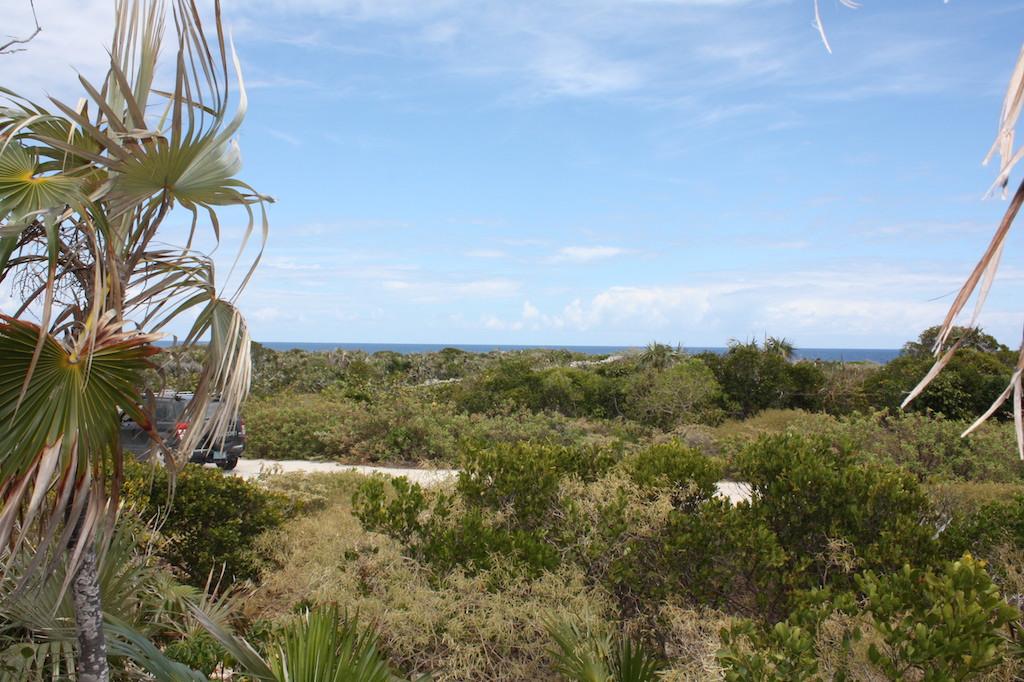 Ocean View lot - $55K