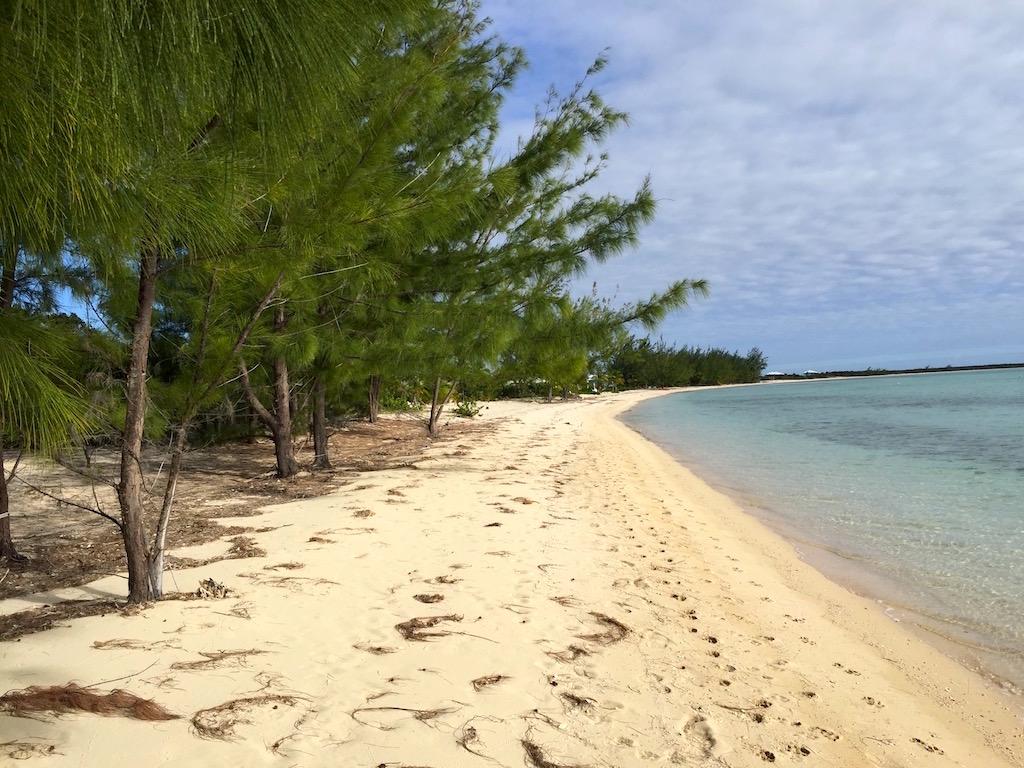 Beachfront with Long sandy strip